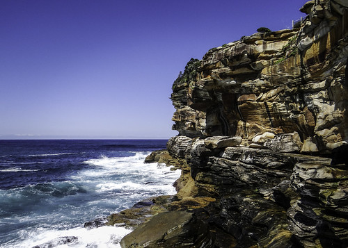 Bondi to Coogee Walk #15. Sydney