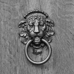 Knock-Knock (koDesign) Tags: door bw 50mm nikon lion ring tor tr knockknock lwe d300 nikkor50mmf14d trklopfer beschlag