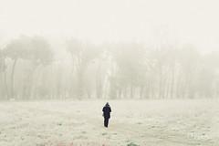 (PetterZenrod) Tags: winter cold fog f14 sigma invierno frío burgos niebla 30mm