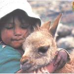 Postales La Paz thumbnail