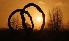 Meeting before sunset (andzwe) Tags: deontmoeting ruudvandewint blijdenstein sculpture sun zon sunset zonsondergang ruinerwold sunshiningthrough art netherlands kunst drenthe beeldhouwwerk sculptuur buurtschap silhouette artist kunstenaar rudivandewint nederland krul boog bogen krullen bow bows explore flickr panasonicdmcgh4 © ©andzwe 2015 atmosphere atmosfeer interestingness261 i500 hoepel zongevangen dutch landscape landscap andzwe panasoniclumixdmcgh4 artwork kunstwerk artistiek ruuddewindt wokkel