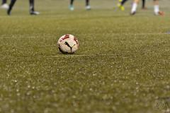 p.13 (Ricky Sahlstrom / risswe.com / on-off) Tags: sweden malm ricky fotboll 2015 allsvenskan malmff sahlstrm