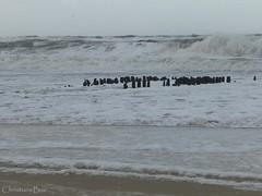 Waves During the Storm (ChristianeBue) Tags: storm water germany deutschland wasser waves felix northsea sylt tyskland nordsee schleswigholstein wellen sturm orkan westerland