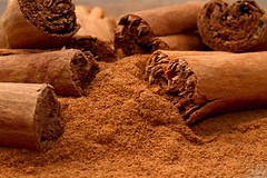 cinnamon-prevents-colorectal-cancer-in-mice (sarahcolon) Tags: cancer colorectal