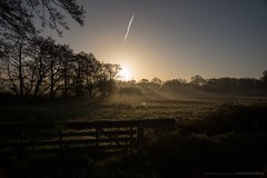 (CarolienCadoni..) Tags: trees light sunset sun sunlight netherlands backlight sunrise foggy earlymorning nederland groningen sunbeams hff smeerling sal2470z happyfencefriday sonyslta99