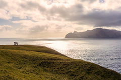 Lost and Found (West Leigh) Tags: ocean travel sunset inspiration nature landscape island peace north atlantic wanderlust explore nordic naturalbeauty inspire faroeislands wander mykines gsadalur