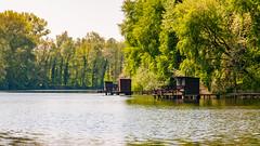 Rheinaue  Altrhein Jockgrim I (iEiEi) Tags: tree nature water river germany landscape deutschland nikon wasser outdoor natur htte hut fluss rhine landschaft rhein rheinaue rheinlandpfalz d300 altrhein jockgrim nikond300 1685mmf3556gvr ieiei
