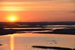 opkomende zon bij Westkapelle (Omroep Zeeland) Tags: vogels natuur zeeland zee duinen zon meeuw westkapelle weer walcheren gebied opkomende