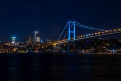 IMGP2682-2-2 (UmitCukurel) Tags: nightphotography sea night cat turkey puente mar pentax turkiye istanbul gato turquia bogazici bosphorus kedi kizkulesi maidentower k3ii