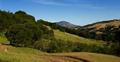 Bay Area Wilderness (kevinfoxphotography53) Tags: park blue photography bay kevin mt state district east hills trail fox diablo morgan oaks preserve regional rolling territory ebparksok glyma