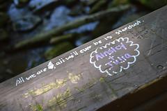 Always Stardust (MTSOfan) Tags: graffiti philosophy science stardust tsp existence doodlebridge