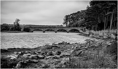 The River Aln . (wayman2011) Tags: uk trees mono coast rocks bridges northumberland alnmouth rivers canon5d lightroom riveraln bwlandscapes wayman2011