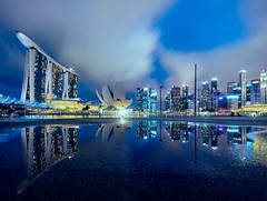 Reflective Bay.... (neoro_blitz) Tags: building architecture night reflections landscape cityscape esplanade cbd hsbc merlion mbs jubileebridge cooling maybank helixbridge gardensbythebay marinabaysands canontse17mmf4l bestcapturesaoi canon17mmtse elitegalleryaoi oceanfinancialcentre canontse17mmf4ltiltshiftlens canoneos5ds canoneos5dsr