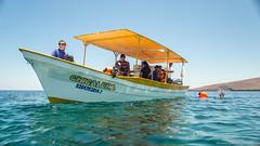 Baja California Sur, Mar de Cortez-23.jpg (gaillard.galopere) Tags: ocean beautiful mexico boat bajacalifornia baja bajacaliforniasur bateau gaillardgalopere mexcapade