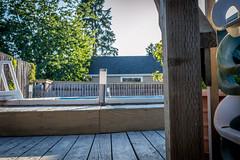 Backyard (TonyTecca) Tags: wood tree lamp pool swimming backyard swimmingpool deck