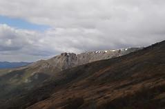 DSC_0773 (David.Sankey) Tags: alaska alaskarange mountains mountainrange denali denalinationalpark hiking nature park nationalparkdenalinationalparkandpreserve mckinley travel fog rivers savageriver savagealpinetrail trial savagealpine