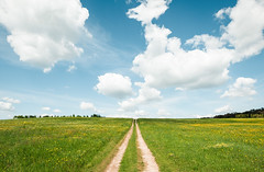 Escape from the city (Andrey Baydak) Tags: sky green field grass landscape vanishingpoint perspective feld himmel wideangle trail    2470