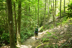 0V5A2402 (Connor Wyckoff) Tags: camping red river hiking kentucky backpacking gorge osprey