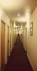 The Shining (Pacurrio) Tags: hotel corridor door doors terrifying focus glow shining dim light ibis madrid barajas fear horror carpet dark intrigue pasillo puerta puertas foco resplandor terrorfico luz tenue moqueta alfombra miedo terror intriga oscuridad