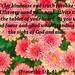 proverbs3-3-4