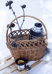 Basket with thermos of mulled wine and knitted blanket on sledge in a snow (Anjelagr) Tags: park christmas winter food orange white holiday snow hot cold cup nature beautiful closeup fruit festive season sticks warm picnic wine tea drink sweet bokeh outdoor cinnamon background traditional spice seasonal beverage nobody cocktail homemade alcohol blanket mug punch knitted pinecone wintertime aromatic thermos grog sledge gluhwein glogg mulled spiced