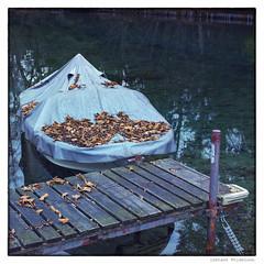 instant 342/365 winter break (tideloon) Tags: square 50mm boat nikon december instant entwicklung 2014 nikondf afsnikkor50mmf18gse