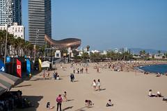 Peix d'Or (emarone) Tags: barcelona sculpture beach lisbon barceloneta ghery portolimpic peixdor