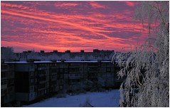 23.01.2015  red morning