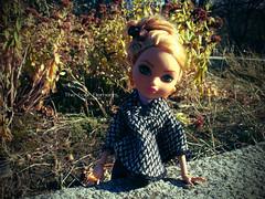Ashlynn Ella (eneida_prince) Tags: photo doll dolls photos cinderella mh mattel 2014 monsterhigh ashlynnella monsterhigh2014 osalina thedaughterofcinderella