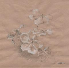 03 12 2014 (Nilla_Pomi) Tags: drawing dibujo disegno nadin nilla nadya  graphik   fartushnaya