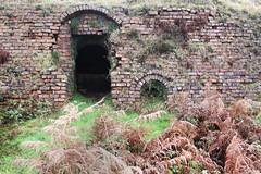 Bryn Brickworks Kiln (Capt' Gorgeous) Tags: southwales brickworks derelict maesteg brcks hoffmankiln cwmfarteg brynbrickworksbrynbrickworks