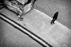Looking in Opposite Directions (SlickSnap Steve) Tags: street urban blackandwhite bw monochrome seaside nikon brighton pov steve streetphotography seafront beckett 2014 d7000