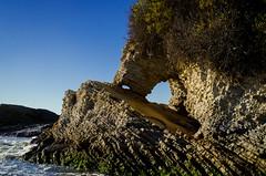 (Duncan Howard) Tags: ocean california sea summer usa art beach water america canon de photography nikon san montana waves pacific surfing luis slo oro obispo