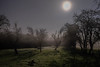 Gloucestershire Orchard by Moonlight (Gareth Keevil) Tags: winter cold gloucestershire moonlit fuji14mm fujixe2