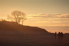 FISCH_LAND in Sicht! (a n u n e fotologie) Tags: winter strand meer natur norden landschaft ostsee kste zingst fischland dars