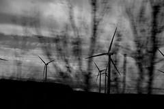 From The Car (Enok76) Tags: mill windmill de wind viento molino molinodeviento