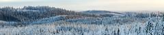 panorama (L.Mikonranta) Tags: winter nature canon finland landscape eos is 300mm l 5d usm f28 ef mkii markii petjvesi canonef300mmf28lisusm canoneos5dmarkii 5d2 5dii 5dmkii canoneos5dmkii 5dmk2 5dmark2 canoneos5dmark2