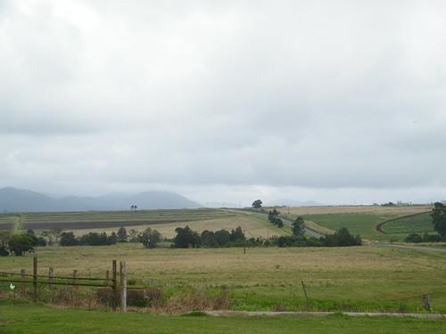 Atherton Farm View