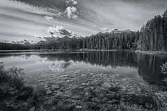Photographer's delight (Dahai Z) Tags: banffnationalpark canadianrockies herbertlake