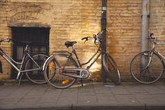 Luces y bicicletas. (www.rojoverdeyazul.es) Tags: bike belgium bicicleta autor gent bueno gand gante lvaro blgica
