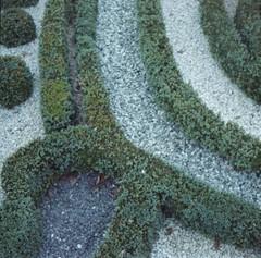 09 (ukneecorn) Tags: nature clr geometrical taxona enroute