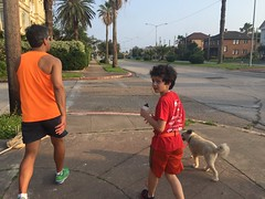 Run dog Run night - april 2016
