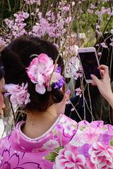 Ros Gold (p.fabian) Tags: japan jp   sakura kimono iphone japn   kytoshi kytofu