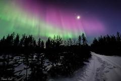 Wondrous winter night (Thomas Kast) Tags: winter nature night suomi finland landscape lights finnland nacht natur northern talvi landschaft auroraborealis y polarlicht nordlicht revontulet