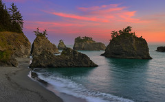 Secret Giants (pdxsafariguy) Tags: ocean park trees sunset usa beach rock clouds oregon sand secretbeach brookings tomschwabel boardmanstatepark