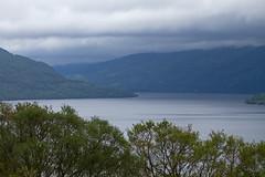 RSPB Inversnaid - Loch Lomond (celia.mulhearn) Tags: lochlomond rspb