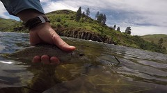 Fly fishing the Grand Ronde (_Kickstand) Tags: video flyfishing grandronde