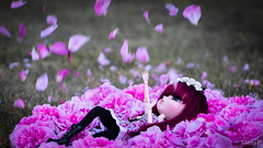 """I don't really understand loneliness"" (MintyP.) Tags: roses 6 flower rain animal island photography eyes doll whispering sony s wig pullip minty 58mm helios reinhold poupe 444 merl nex obitsu elwyna mintyp"