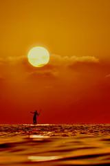 [ Marsia - Marsyas ] DSC_0530.2.jinkoll (jinkoll) Tags: sun sea sunset silhouette unfocused sky clouds yellow orange water waves reflections tropea calabria floating surf surfboard sup standuppaddle equilibrium balance horizon