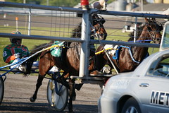 Mozartsplace, June 18, 2016 (Taylor Racing) Tags: red racing ponder harness shores pei charlottetown artsplace mozartsplace